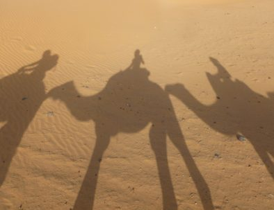 Shadow of camel trekking Merzouga