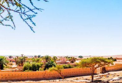 Oasis of Merzouga desert