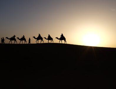 Zagora desert tour
