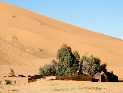 Oasis and camping merzouga desert