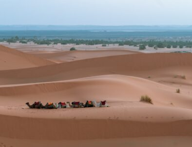 7 Days tour from Marrakech to Fes