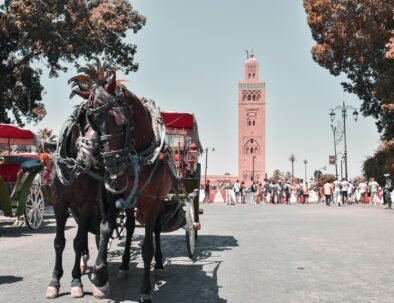 5 Days tour from Marrakech to Fes
